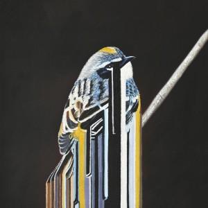 Maurizio Bongiovanni, Bird Rib, olio su tela, 2010, Pippo Lombardo