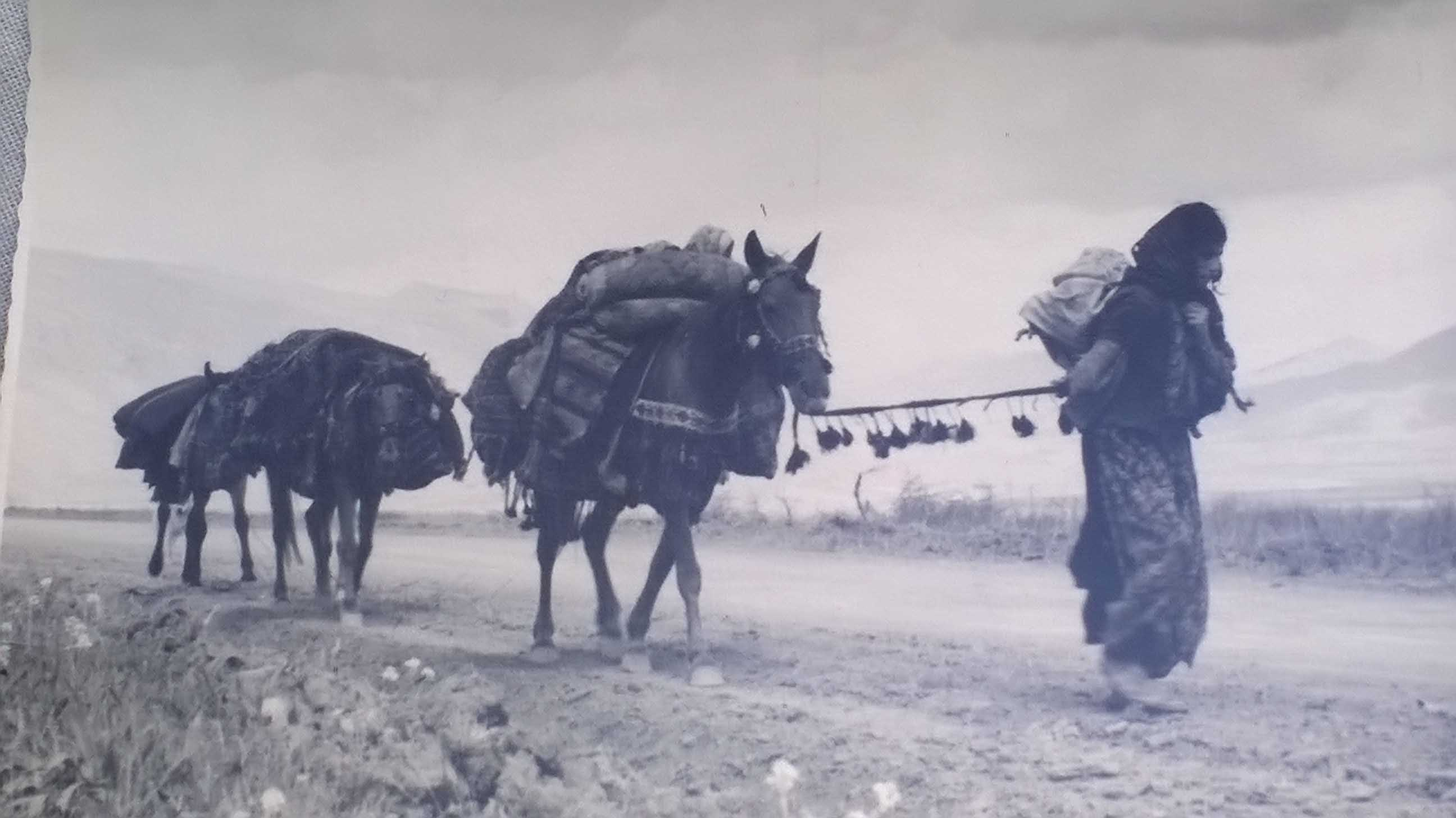 Adriano Paltrinieri, Haji Omran, Iraq, Nomade, 12 Aprile 1958