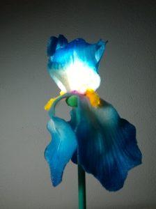 Piero Gilardi, Iris, per Sculture con Luce a cura di Ivan Fassio