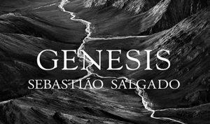 Sebastiao Salgado, Reggia di Venaria