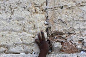 Poesie per un Mondo senza Muri. Cavallerizza Irreale