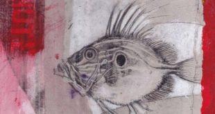 Riccardo Cecchetti per Animalia. Anime e Anomalie