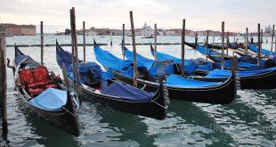 Nel labirinto del Padiglione Italia – La Biennale di Venezia, 58. Esposizione Internazionale d'Arte