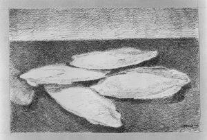 Francesco Menzio, disegno per Ossi di Seppia di Eugenio Montale, Einaudi