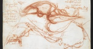 """Leonardo da Vinci: A Mind in Motion"" alla British Library"