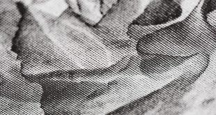 Cosimo Veneziano e il suo BIOMEGA Multiverso da CAMERA
