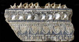 I mosaici dalle Collezioni Capitoline. Colori dei Romani